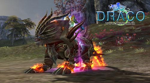 Draco6