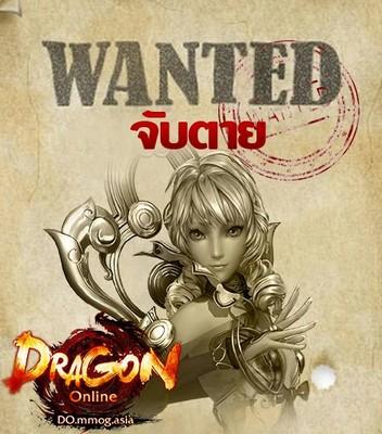 dragonNew4