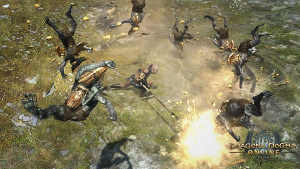 Dragons-Dogma-Online 29-11-15-009