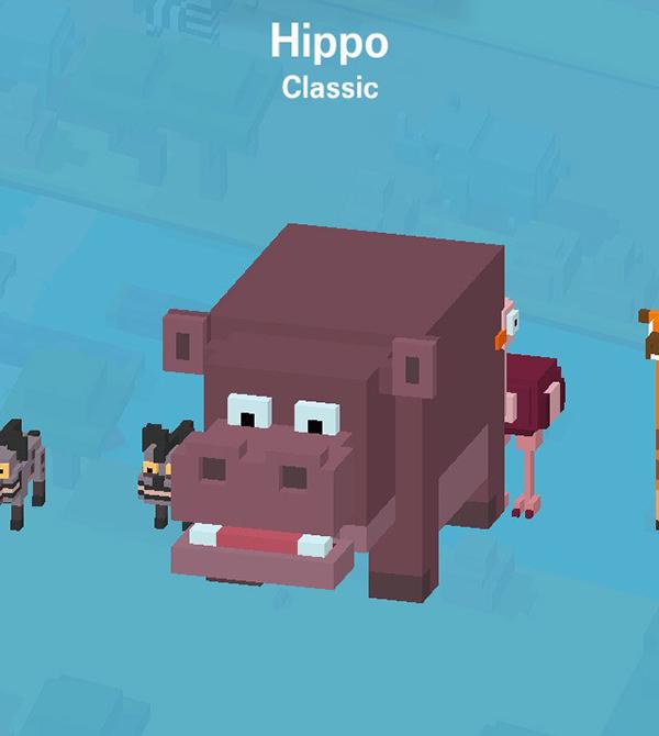 10_Hippo