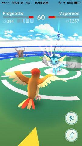 13082016_Pokemonตียิม_006
