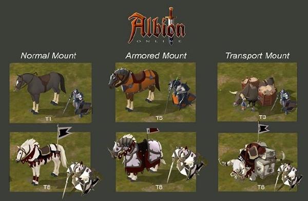 Albion 10-8-14-008