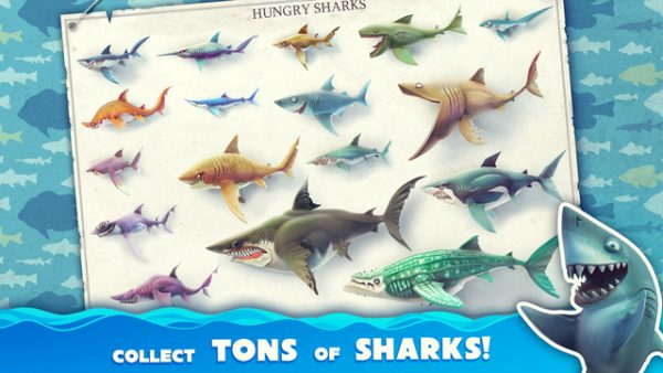 hungry-shark-world_3